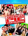 American Pie: 4 Film Collection